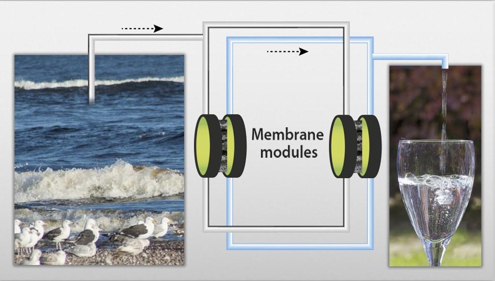 Seawater desalination using membrane processes.
