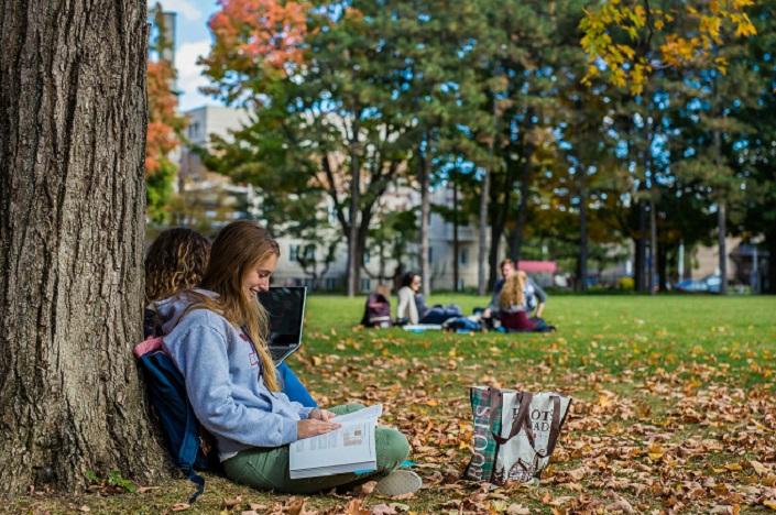 Une étudiante lit sous un arbre / A student reads under a tree