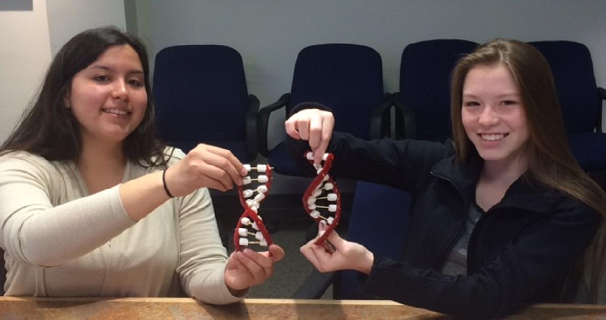 Deux jeunes filles participent à une actvitité pratique sur la science.