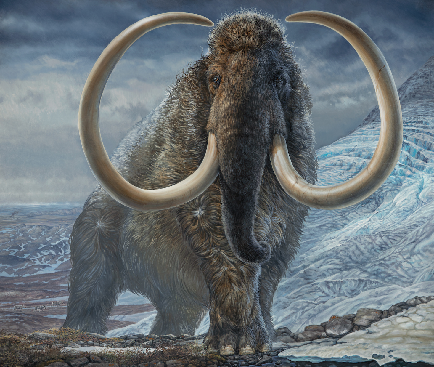 Rendering of wooly mammoth