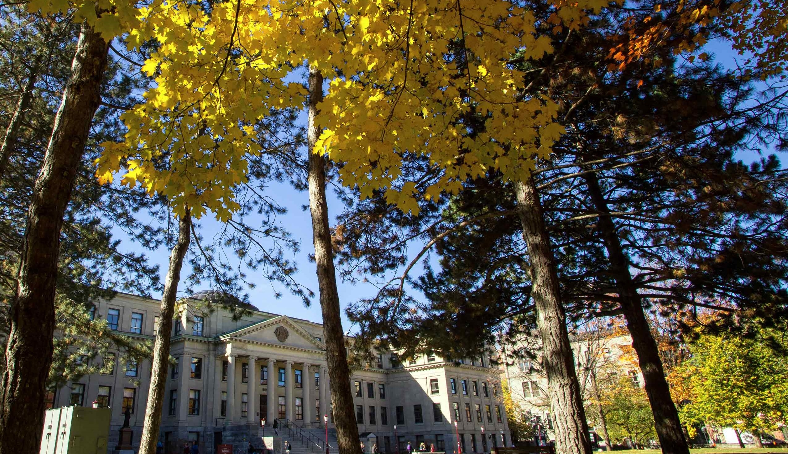 Tabaret Hall in the fall, trees with leaves turning color in the forefront