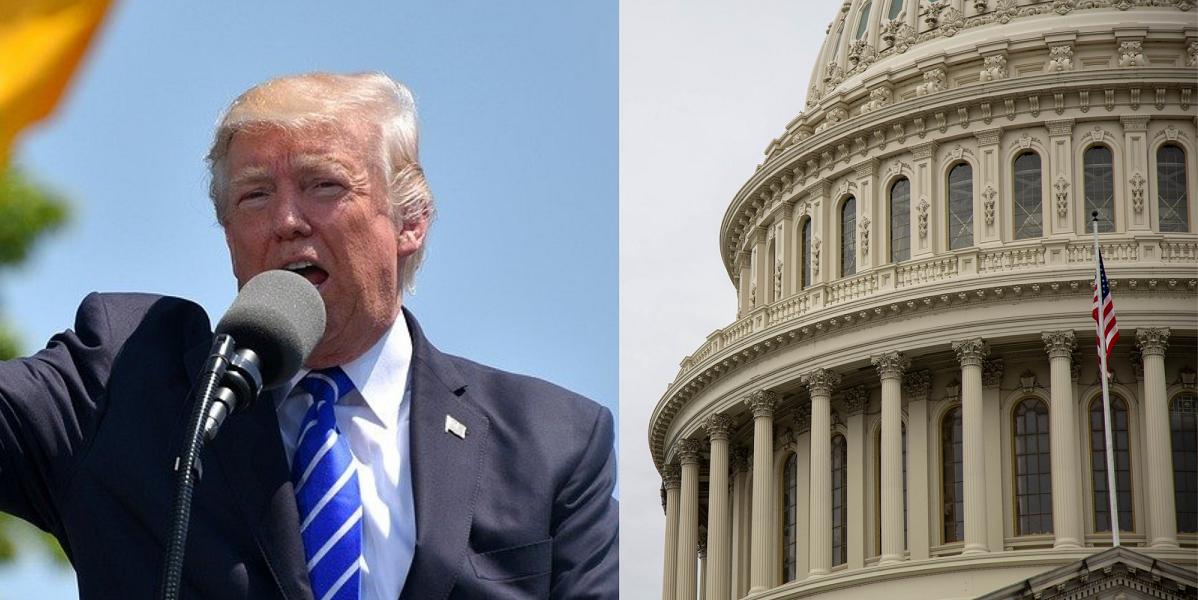 Collage de Trump et l'édifice Capitol