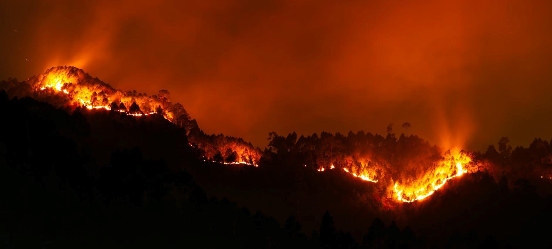 Scène d'un grand incendie de forêt de nuit